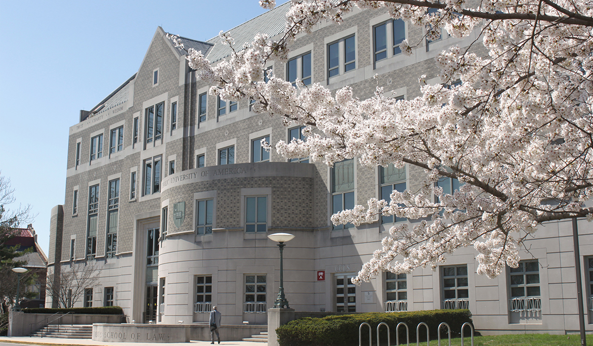 Law School with Cherry Blossoms
